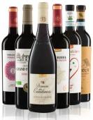Demeter Rotweinpaket