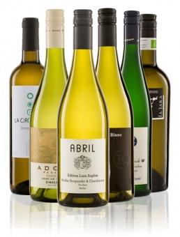 Probierpaket Bioweißwein Gold (6 x 2 Flaschen)