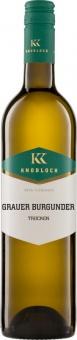 Grauer Burgunder Gutswein QW 2018 Knobloch (im 6er Karton)