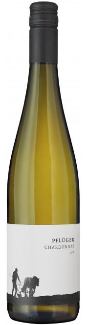 Chardonnay trocken 2017 (im 6er Karton)