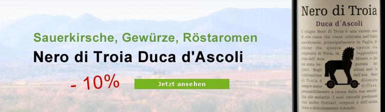 Nero di Troia Duca D'Ascoli Biowein im Angebot