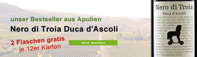 Nero di Troia Duca d'Ascoli Biowein